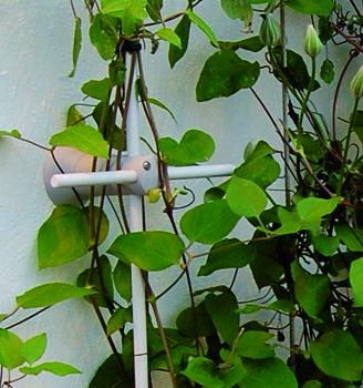 Grønne vaier veggfester i kompositt